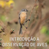 22/11 ► Introdução a observação de aves com o biólogo Eduardo Franco.